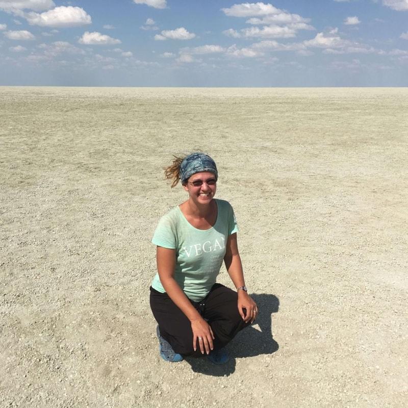 Etosha salt plain