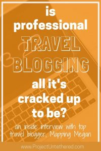 graphic with text saying is professional travel blogging all it's cracked up to be?