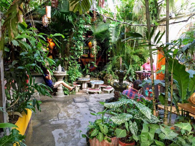 Green jungle decorations in Los Amigos Hostel in Flores, Guatemala