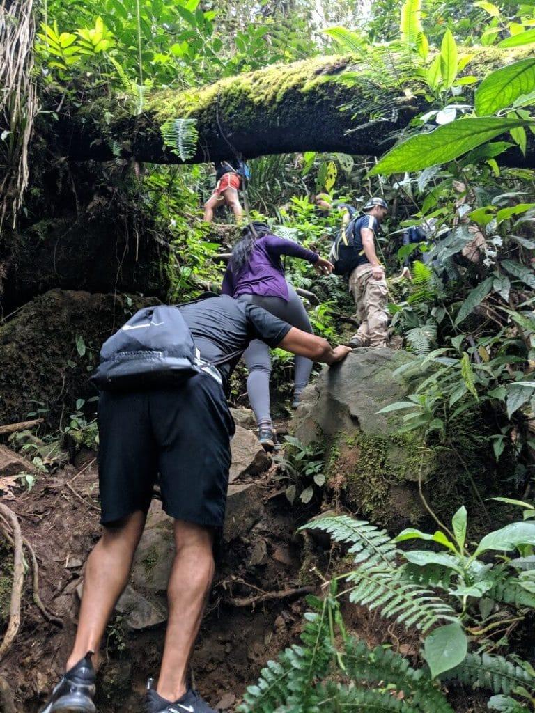 Climbing the trail to Pico de Loro near Cali, Colombia