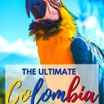 The perfect 3 weeks in Colombia itinerary - Bird
