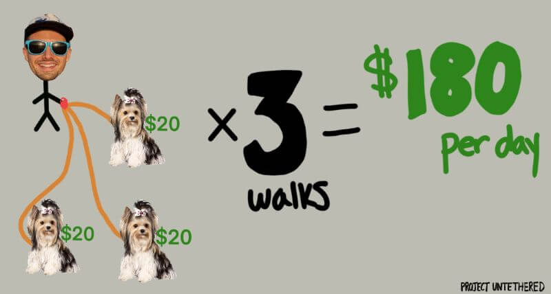 drawing that shows how much you'd earn per day if you chose dog walking as your offline drop servicing business